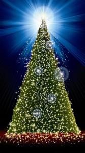 Memorial Tree Image (Copy)